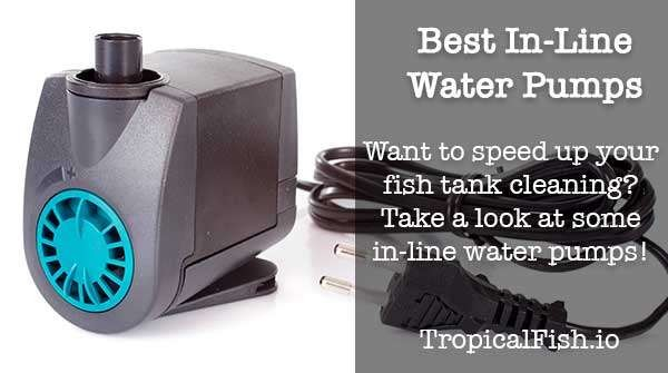 Best Inline Water Pump For Cleaning Fish Tanks