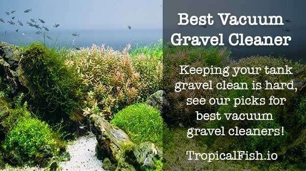 best vacuum gravel cleaners